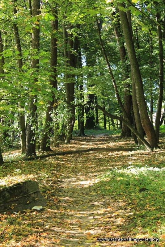 W poszukiwaniu magii miejsc w gminie Żyraków